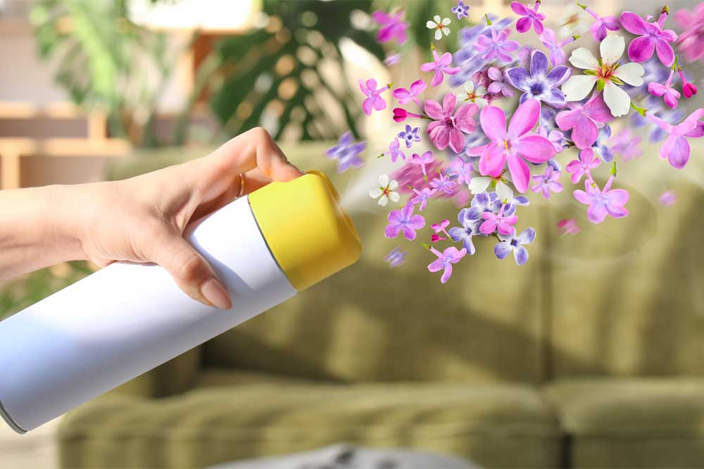 Osvěžovač Vzduchu Bez Chemie