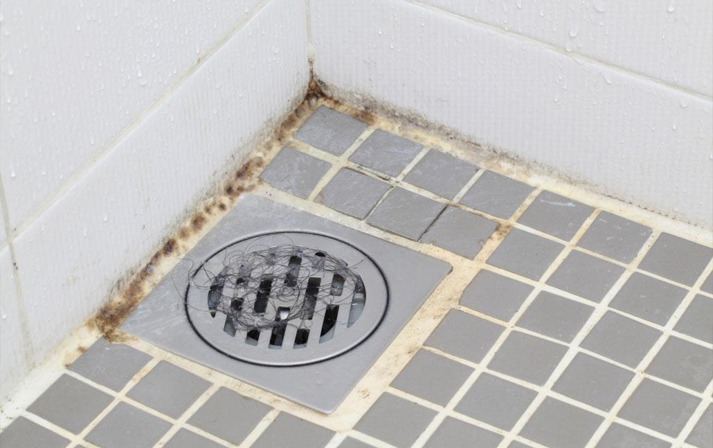 Plíseň V Koupelně