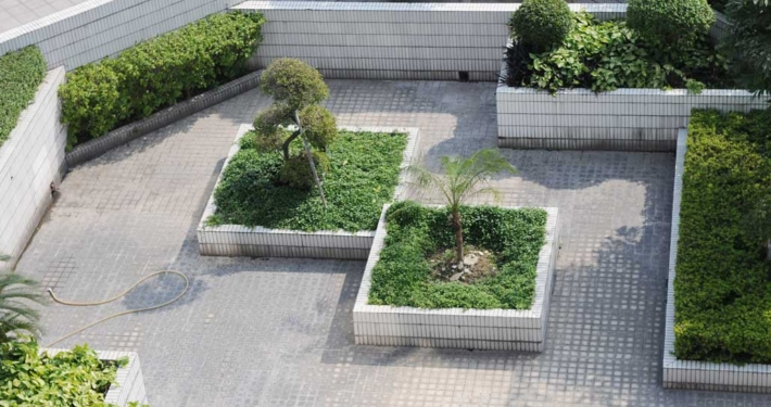 Střešní zahrada